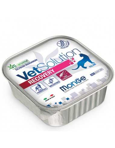 copy of MONGE VETSOL CAT-RECOVERY 100G